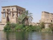 Los últimos jeroglíficos