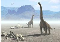 El Valle De Los Dinosaurios