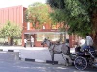 Hoy Vamos Al Museo de Luxor