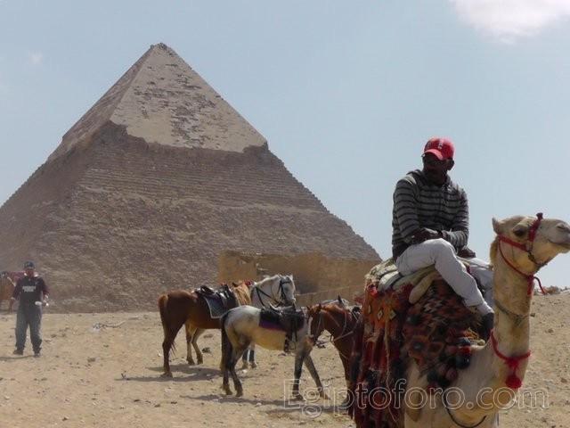 Egipto_2013_045