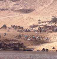 99-Viaje_a_Egipto_159.jpg