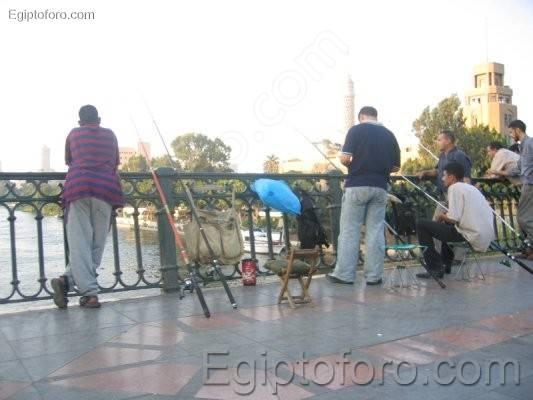 Pescando_en_el_puente_Al-_Galaa