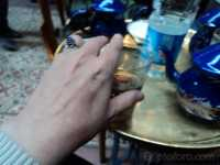 1001_kalili_fishawi.JPG
