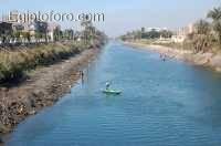 balyana-egipto.jpg