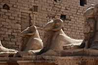Karnak-Avenida_de_las_esfinges.JPG