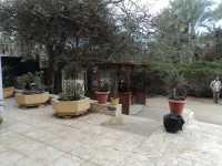966_museo_mefis.JPG