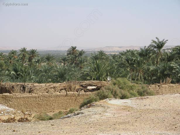 Bahariya1