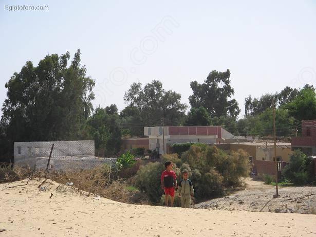 Bahariya4