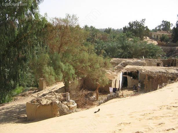 Bahariya5
