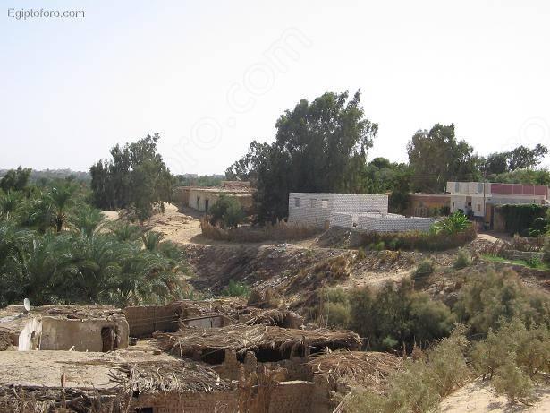Bahariya7