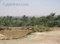 Bahariya1.jpg