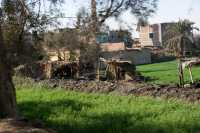 Valle-del-Nilo-008.jpg
