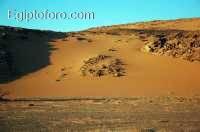 12-desierto-oriental-arabico.jpg