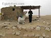 Policia_turistica_en_saqqara.JPG