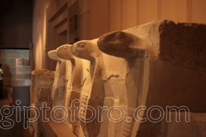 egipto19