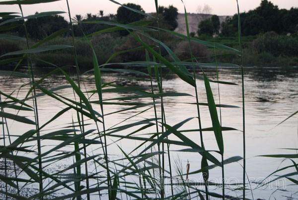 Canal-del-Nilo