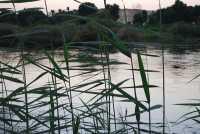 Canal-del-Nilo.jpg